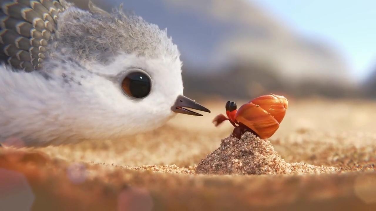 Still of Piper. Courtesy of Pixar Studios
